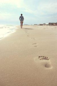 beach-731137_1920