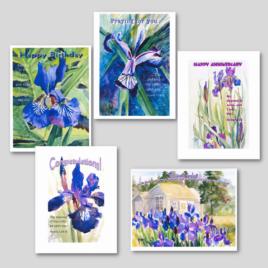 Flower Card Pack #4